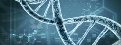 nutrigenetica milano, test nutrigene milano, Test nutrizionali milano